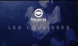 Coulisses Nausicaà
